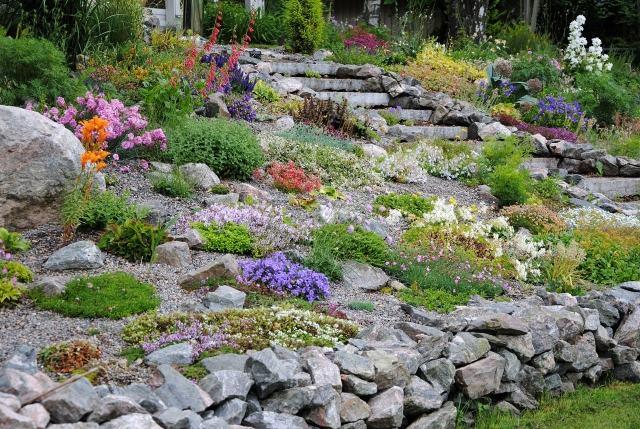 R aliser votre jardin de rocaille - Image de rocaille ...